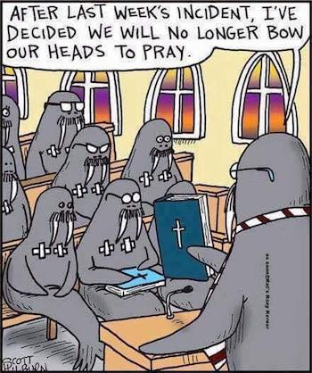Walrus Church'